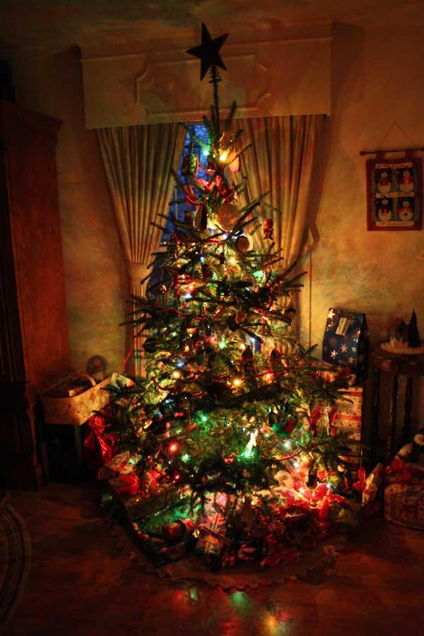 Tree-lit