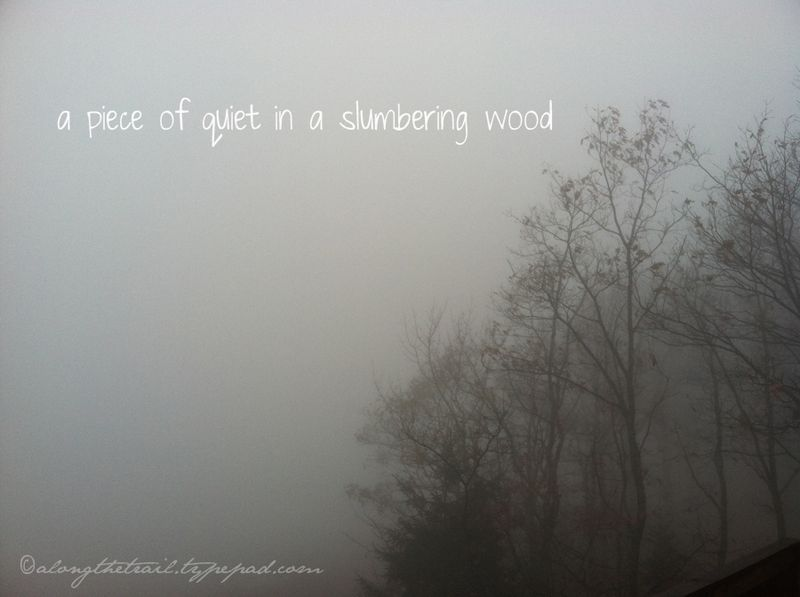 Slumbering-wood