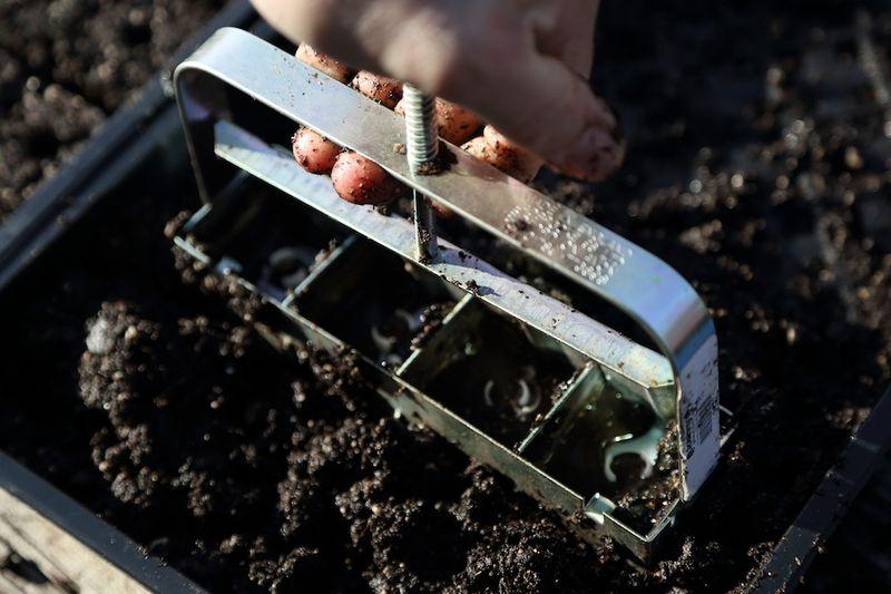 Soil blocker2