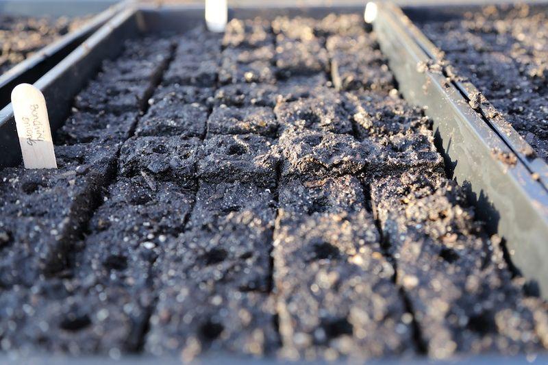 Soil blocker4