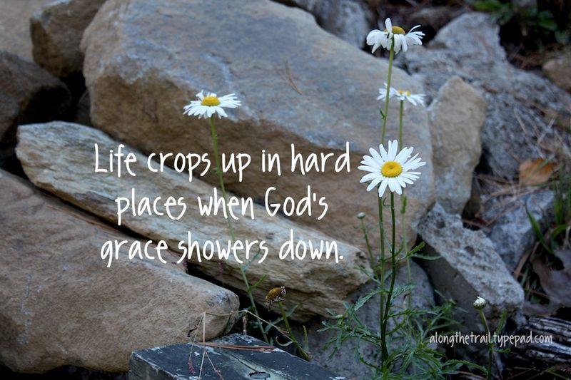 Grace showers down