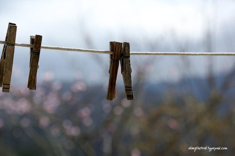 Sickbed clothespins