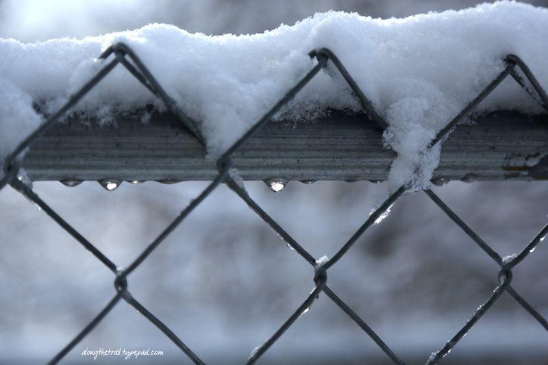 Stuck Inside Snow5