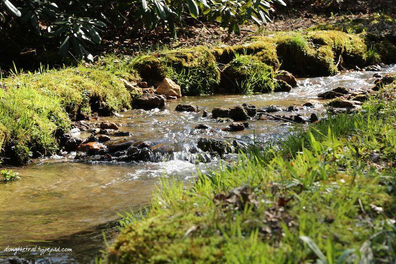 Whisper Mountain Creek 4