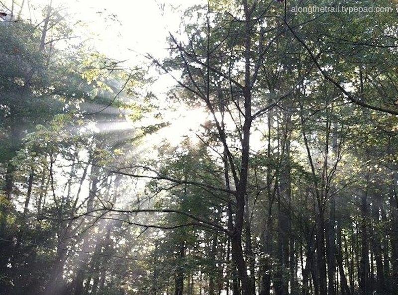 Whisper Mountain Sunburst