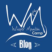 2014-WMBLOG-Logo